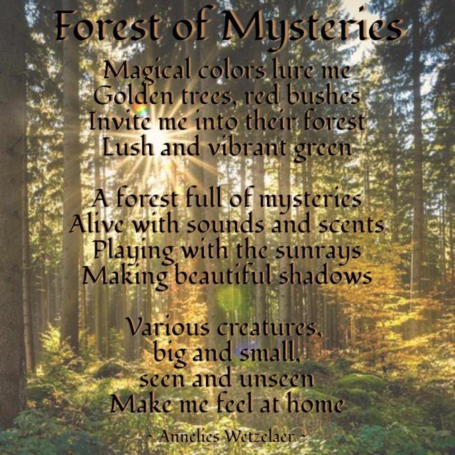 forest-PixTeller-174742.jpg